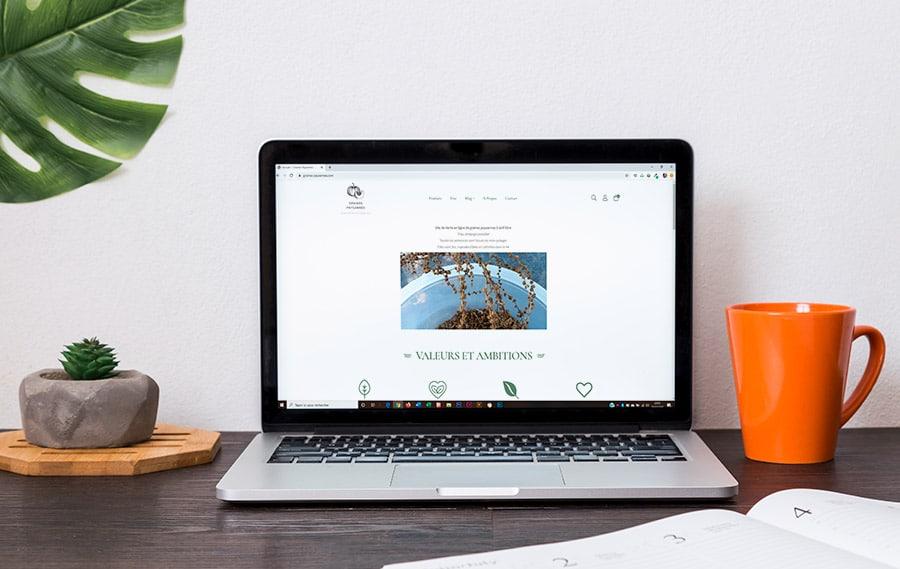Optimisation du site web Graines Paysannes